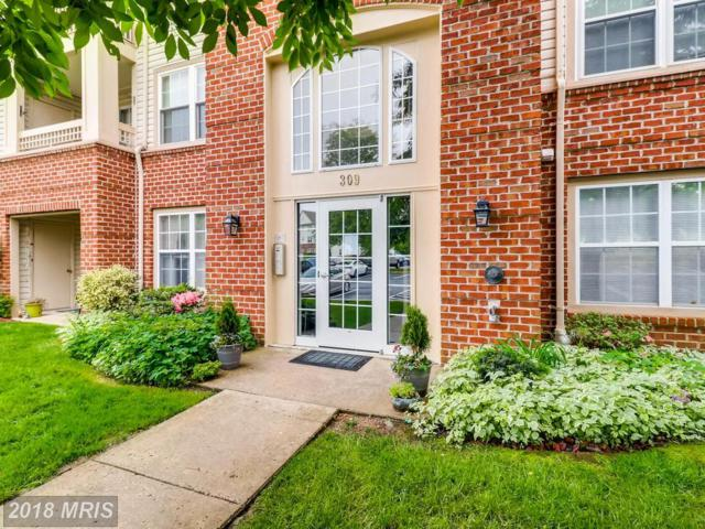 309-M Tall Pines Court #12, Abingdon, MD 21009 (#HR10250006) :: Advance Realty Bel Air, Inc