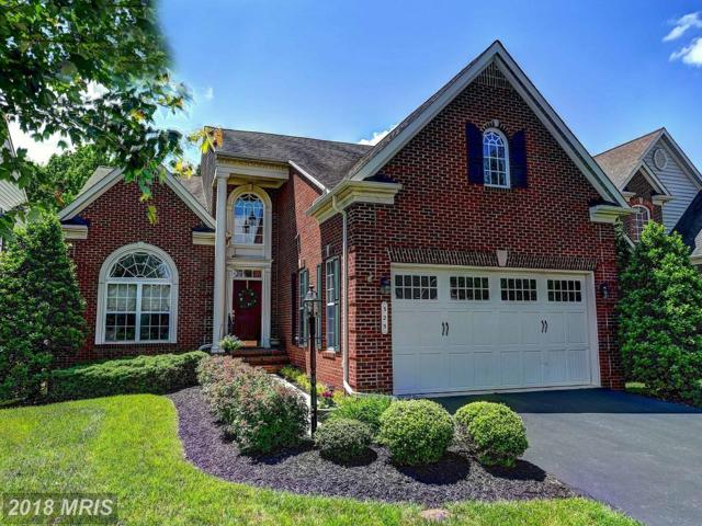 325 Seattle Slew Place, Havre De Grace, MD 21078 (#HR10261748) :: The Gus Anthony Team