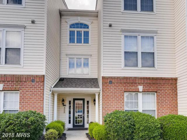 110-F Bayland Drive F, Havre De Grace, MD 21078 (#HR10284825) :: Gail Nyman Group