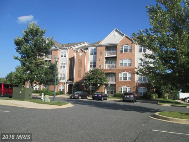 201 Secretariat Drive H, Havre De Grace, MD 21078 (#HR10322227) :: Tessier Real Estate