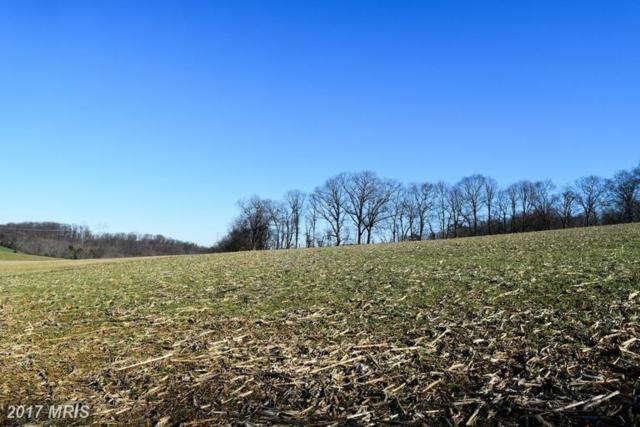 4733 Fawn Grove Road, Pylesville, MD 21132 (#HR9841749) :: Pearson Smith Realty