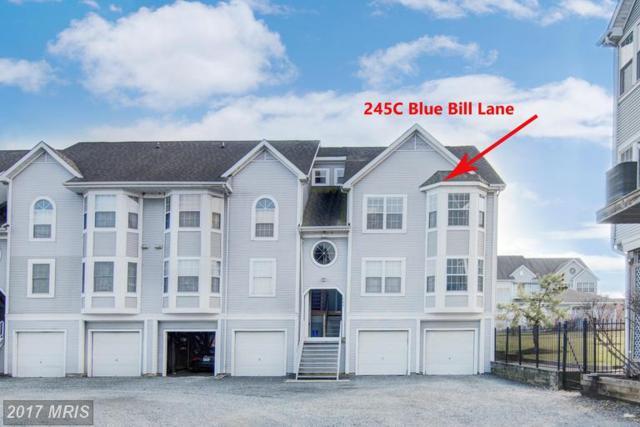 245 Blue Bill Lane C, Havre De Grace, MD 21078 (#HR9860490) :: LoCoMusings
