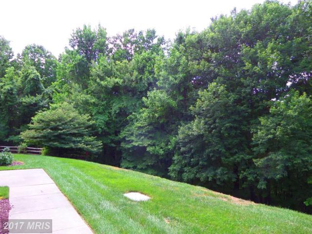 1306-C Scottsdale Drive #201, Bel Air, MD 21015 (#HR9994598) :: Pearson Smith Realty