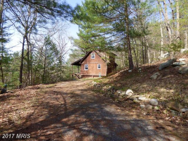 233 High Cliff Road, Capon Bridge, WV 26711 (#HS10004974) :: Pearson Smith Realty