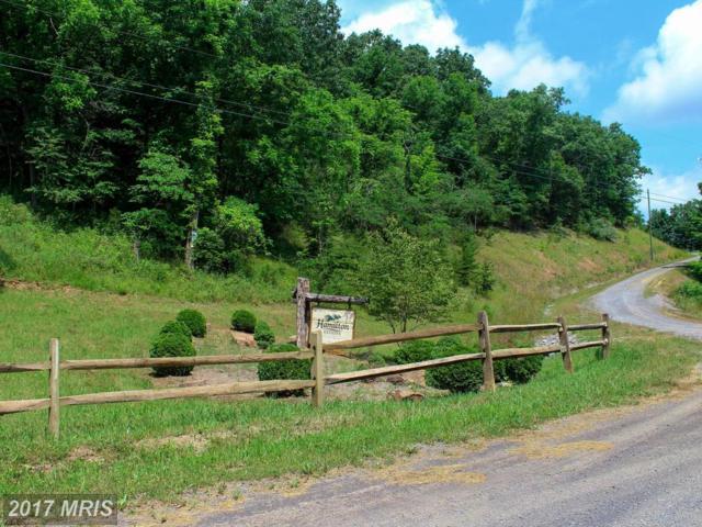 Hamilton Oaks Drive, Romney, WV 26757 (#HS10009122) :: Pearson Smith Realty