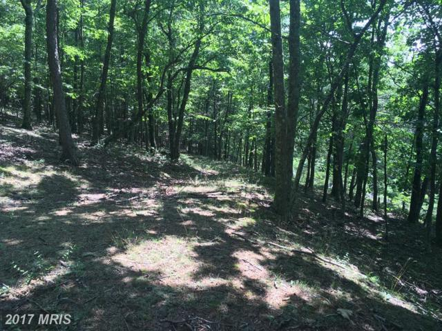 Little Cacapon Mtn Road, Augusta, WV 26704 (#HS10019633) :: Pearson Smith Realty