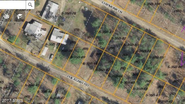 Chipmunk Lane, Augusta, WV 26704 (#HS10035516) :: Pearson Smith Realty
