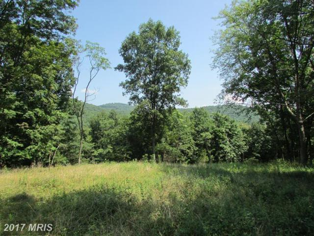 70 BLUFFS ON THE POTOMAC, Springfield, WV 26763 (#HS10035537) :: Pearson Smith Realty