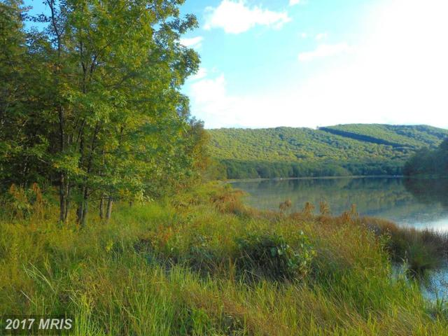 Lake Ferndale Drive, Springfield, WV 26763 (#HS10052258) :: Pearson Smith Realty