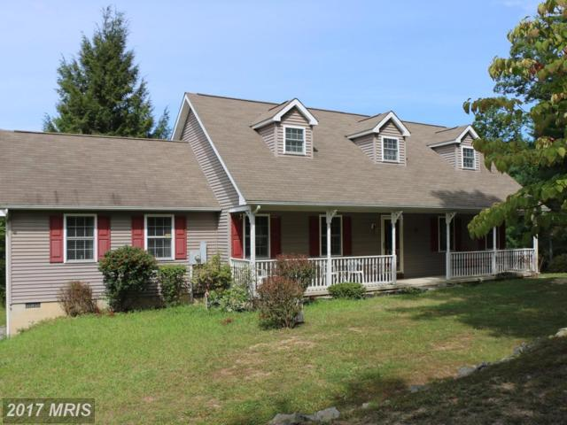 6484 Carpers Pike, Yellow Spring, WV 26865 (#HS10054543) :: Pearson Smith Realty