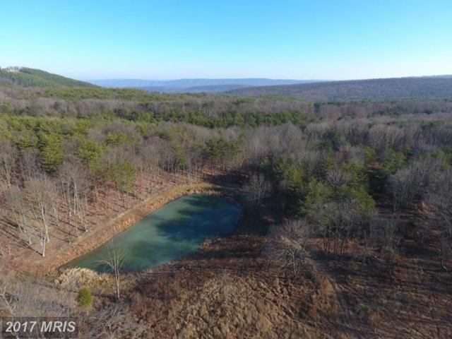 158 Bluffs On The Potomac, Romney, WV 26757 (#HS10060647) :: Pearson Smith Realty