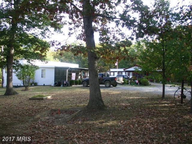 75 Foxy Ln., Delray, WV 26714 (#HS10077856) :: Pearson Smith Realty
