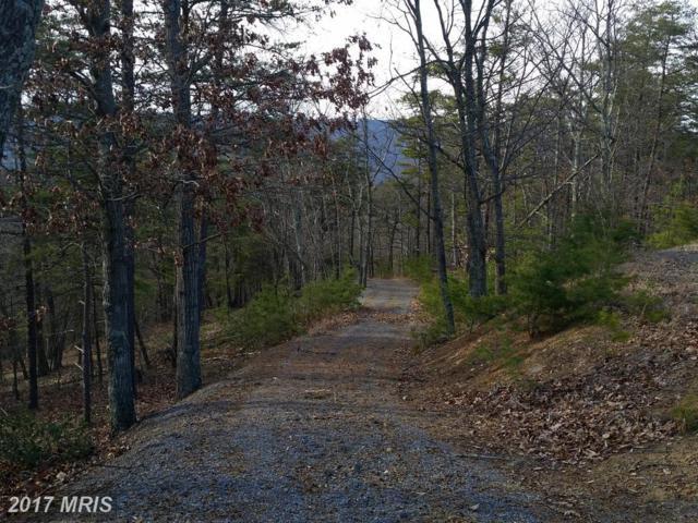 Brown Cardinal Ridge, Romney, WV 26757 (#HS10081851) :: LoCoMusings