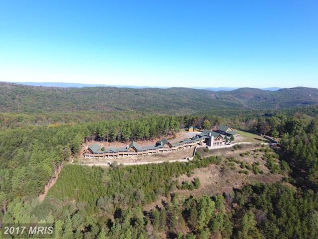570 Bluffs Potomac Ridge Road, Springfield, WV 26763 (#HS10085367) :: LoCoMusings