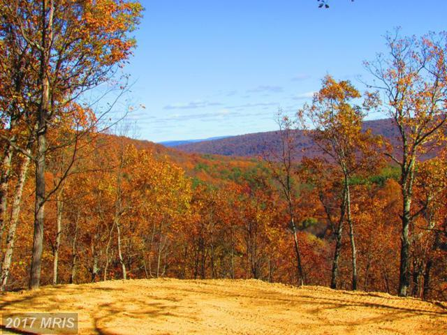 238 BLUFFS ON THE POTOMAC, Romney, WV 26757 (#HS10103530) :: Pearson Smith Realty
