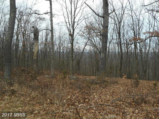 Cmr Ridge Road, Romney, WV 26757 (#HS10117314) :: Hill Crest Realty
