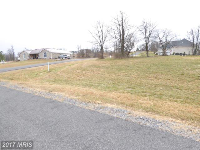 47 Spencer Lane, Romney, WV 26757 (#HS10117773) :: LoCoMusings