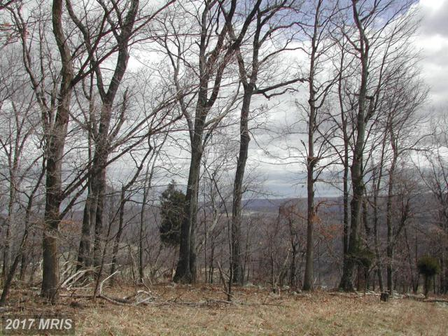 LOT #24 Hoover Young Drive, Capon Bridge, WV 26711 (#HS10121645) :: Pearson Smith Realty