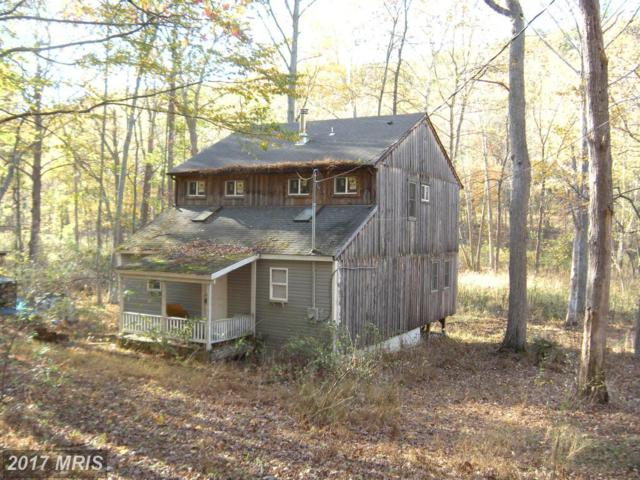 1251 Ritters Valley Drive, Capon Bridge, WV 26711 (#HS10121647) :: Pearson Smith Realty