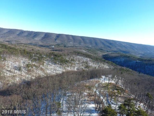 242 BLUFFS ON THE POTOMAC, Romney, WV 26757 (#HS10127687) :: Pearson Smith Realty
