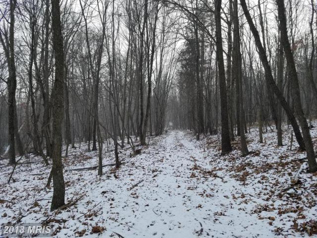 87 BLUFFS BLUEBIRD Trail, Springfield, WV 26763 (#HS10130207) :: Pearson Smith Realty