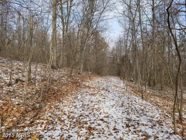 Bluffs Bluebird Trail, Romney, WV 26757 (#HS10133084) :: Pearson Smith Realty