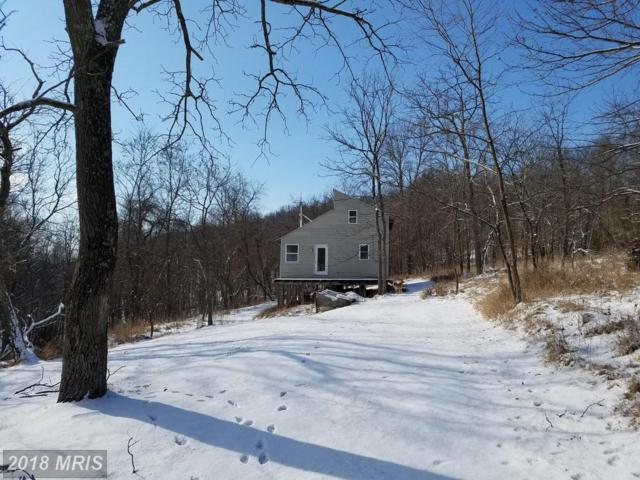 Starns Rd, Romney, WV 26757 (#HS10138851) :: The Gus Anthony Team