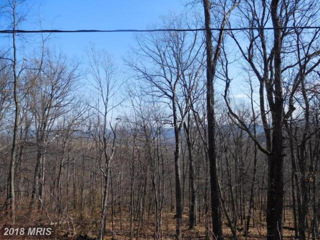 Lot 10 Frenchburg Estates, Augusta, WV 26704 (#HS10154277) :: Hill Crest Realty