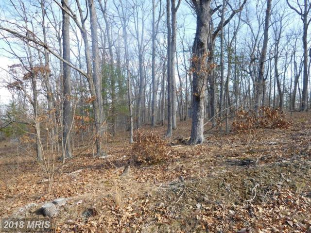 Lot E Chestnut Drive, Augusta, WV 26704 (#HS10155888) :: Hill Crest Realty