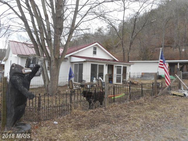28 Shillingburg Lane, Springfield, WV 26763 (#HS10162816) :: Hill Crest Realty