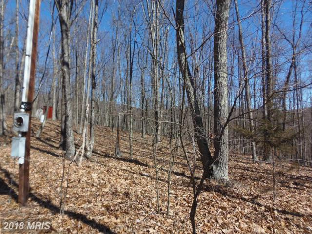 Rendezvous Road, Capon Bridge, WV 26711 (#HS10189683) :: Browning Homes Group