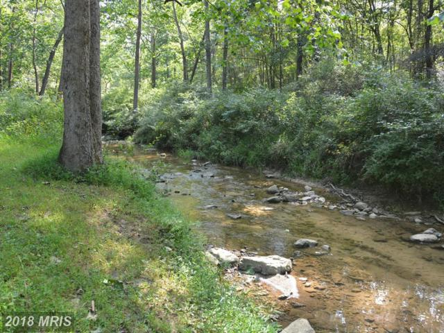 LOT #10 Old Mill Road, Capon Bridge, WV 26711 (#HS10255855) :: Eric Stewart Group