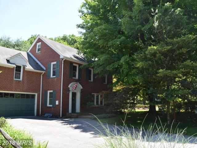 190 Whippoorwill Drive, Romney, WV 26757 (#HS10271867) :: The Gus Anthony Team