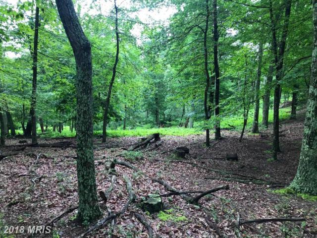 Doe Garden, Wardensville, WV 26851 (#HS10315889) :: Fine Nest Realty Group