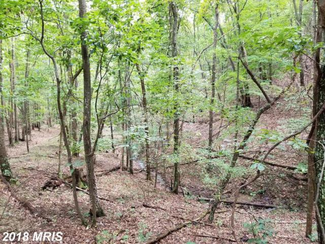 10 PASSIN WIND Hollow, Springfield, WV 26763 (#HS10350087) :: Hill Crest Realty