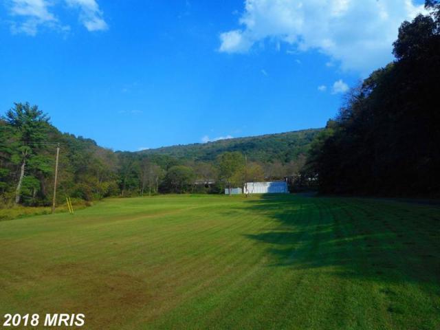 67 Flinn Court, Romney, WV 26757 (#HS10353138) :: Hill Crest Realty