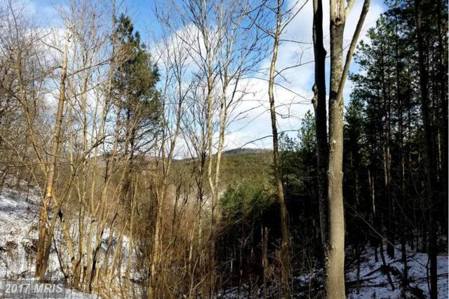 Grace's Cabin Road, Romney, WV 26757 (#HS9844013) :: LoCoMusings