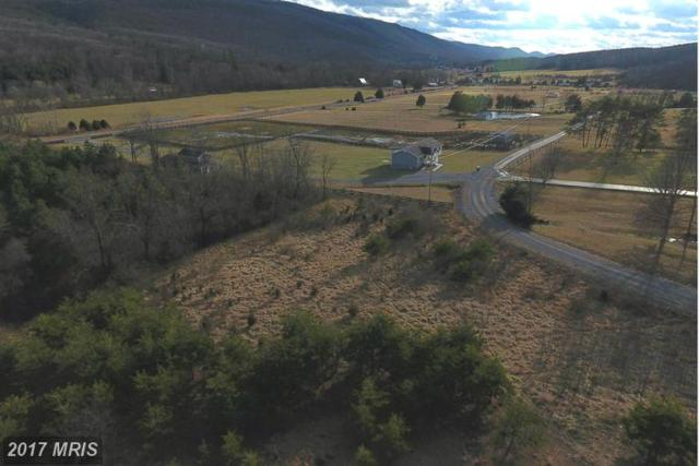 North Crescent Drive, Delray, WV 26714 (#HS9855310) :: LoCoMusings