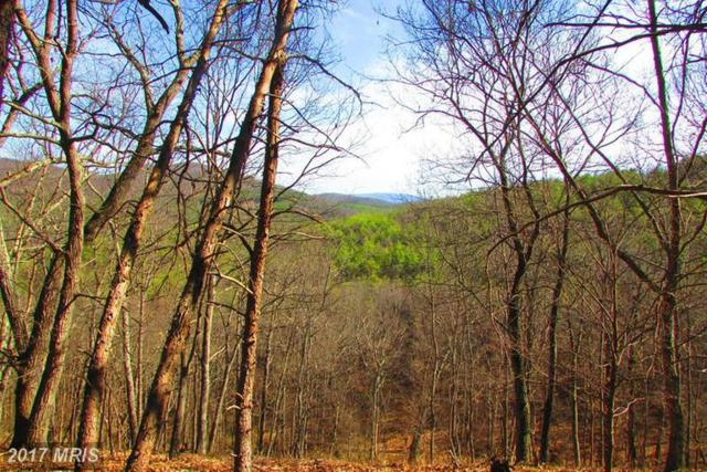 117 BLUFFS ON THE POTOMAC, Springfield, WV 26763 (#HS9892092) :: Pearson Smith Realty