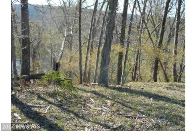 15 Creekside, Capon Bridge, WV 26711 (#HS9925465) :: LoCoMusings