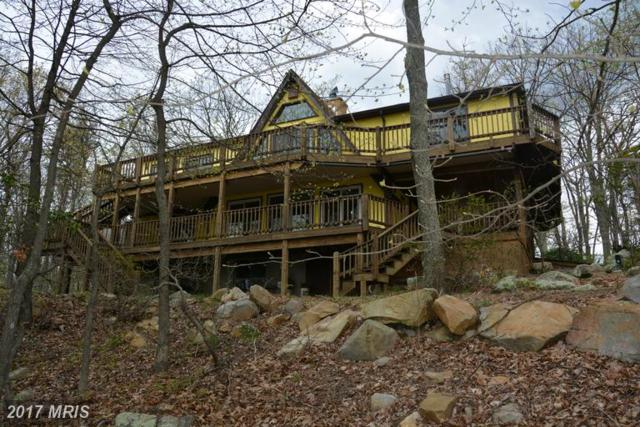 1855 Ritter Drive, Capon Bridge, WV 26711 (#HS9927213) :: Pearson Smith Realty