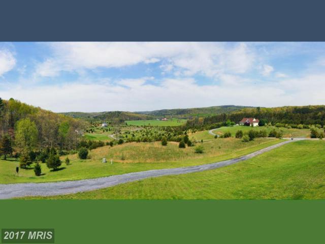 111 Paso Fino Drive, Augusta, WV 26704 (#HS9931934) :: Pearson Smith Realty