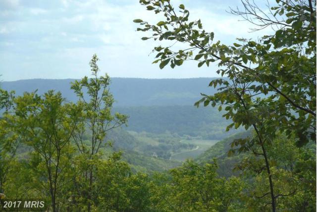 Bluffs Bluebird Trail, Springfield, WV 26763 (#HS9933089) :: LoCoMusings