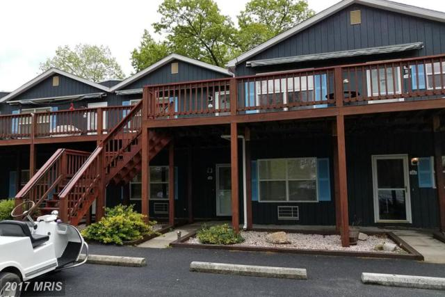 1015 Avalon Dr. #1015, Paw Paw, WV 25434 (#HS9954979) :: Pearson Smith Realty