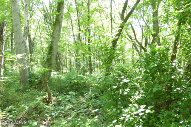 Crestview Mtn Road, Augusta, WV 26704 (#HS9967545) :: Pearson Smith Realty