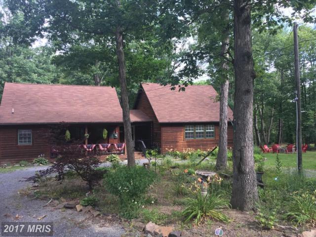 790 Riverwood Trail Trail, Augusta, WV 26704 (#HS9993642) :: LoCoMusings