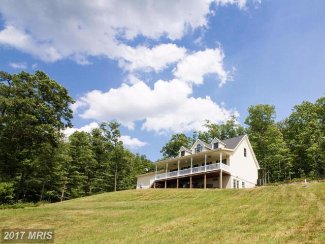 559 Pioneer Lane, Augusta, WV 26704 (#HS9995025) :: Pearson Smith Realty