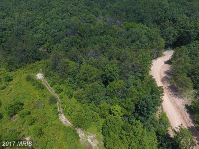 Jake Ruckman Rd-Belle Hol Road, Augusta, WV 26704 (#HS9995518) :: Pearson Smith Realty