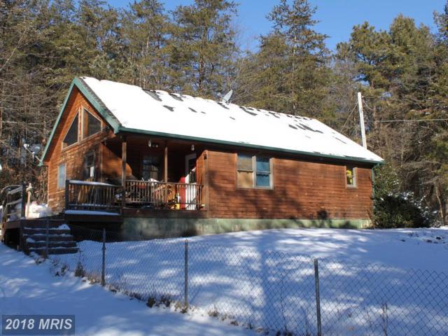 17480 Beavertown Road, Todd, PA 16685 (#HU10138643) :: Pearson Smith Realty