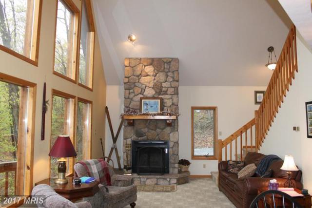 17003 Deep Forest Drive, James Creek, PA 16657 (#HU9941765) :: Pearson Smith Realty